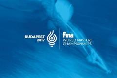 0 fina world masters championships budapest 2017